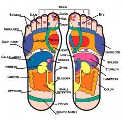 reflexology-foot-cream-infographics