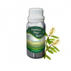 Essential Oil Cajeput 100 g