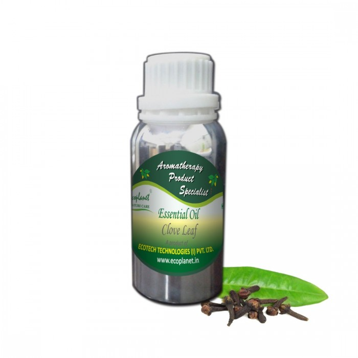 ecoplanet essential oil clove leaf