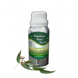 Essential Oil Eucalyptus 100 g