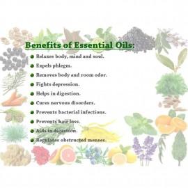 Essential Oil Lemon 100g