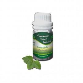 Essential Oil Patchouli 50 g