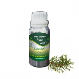 Essential Oil Pine 100 g