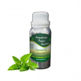 Essential Oil Spearmint 100 g