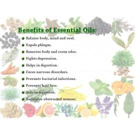 Essential Oil Vetiver 25 g