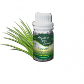 Essential Oil Ginger Grass 50 g