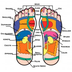 reflexology-foot-balm-infographics